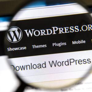Die besten WordPress Premium Plugins